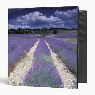 Europe, France, Provence. Lavander fields Binder