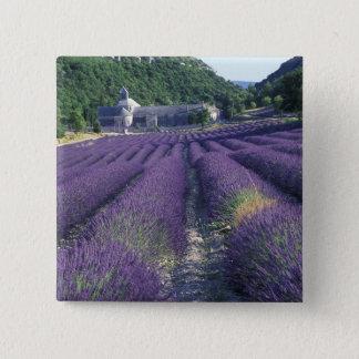 Europe, France, Provence. Lavander fields Button