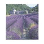 Europe, France, Provence. Lavander fields Memo Notepad