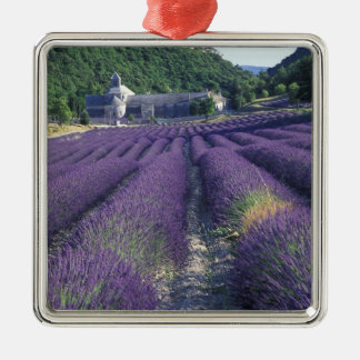 Europe France Provence Lavander fields Christmas Tree Ornaments