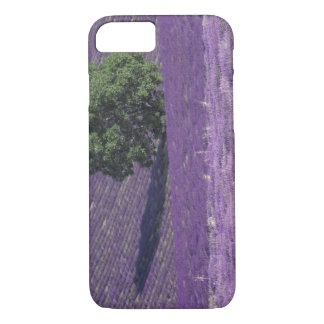 Europe, France, Provence, Sault, Lavender fields iPhone 8/7 Case