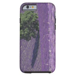 Europe, France, Provence, Sault, Lavender fields Tough iPhone 6 Case