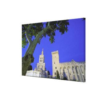 Europe, France, Provence, Vaucluse, Avignon. Canvas Print