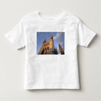 Europe, France, Rhone Valley, Vallee du Rhone, Toddler T-shirt