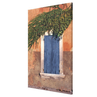 Europe, France, Roussillon. Ivy covers the wall Canvas Print