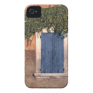 Europe, France, Roussillon. Ivy covers the wall iPhone 4 Covers
