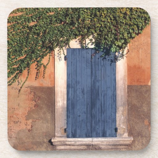 Europe, France, Roussillon. Ivy covers the wall Drink Coaster