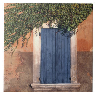 Europe, France, Roussillon. Ivy covers the wall Large Square Tile
