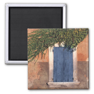 Europe, France, Roussillon. Ivy covers the wall Magnet