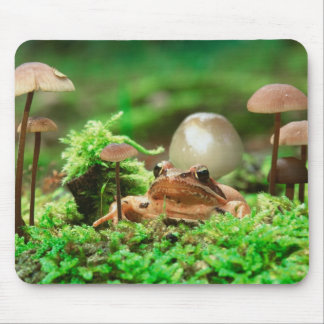 EUROPE, Germany, Baltic Sea, Island of Ruegen. Mouse Pad