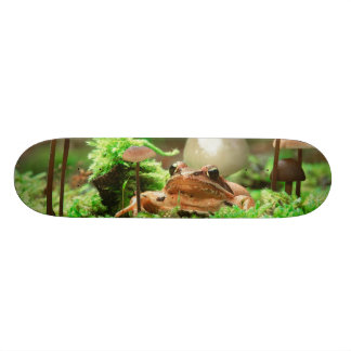 EUROPE, Germany, Baltic Sea, Island of Ruegen. Skateboard