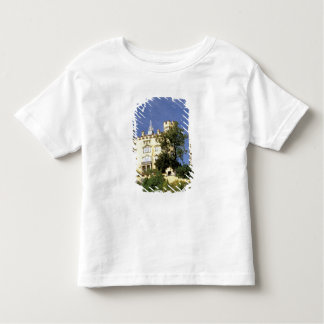 Europe, Germany, Bayern Bavaria), Fussen. Toddler T-shirt