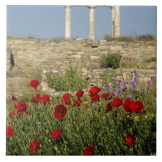 Europe, Greece, Cyclades, Delos. Column ruins. 2 Ceramic Tile
