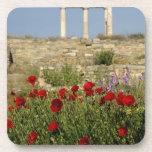 Europe, Greece, Cyclades, Delos. Column ruins. 2 Coaster
