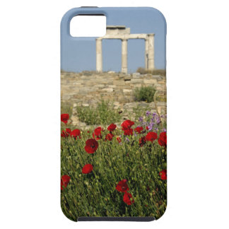 Europe, Greece, Cyclades, Delos. Column ruins. 2 iPhone SE/5/5s Case