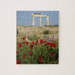 Europe, Greece, Cyclades, Delos. Column ruins. 2 Jigsaw Puzzle