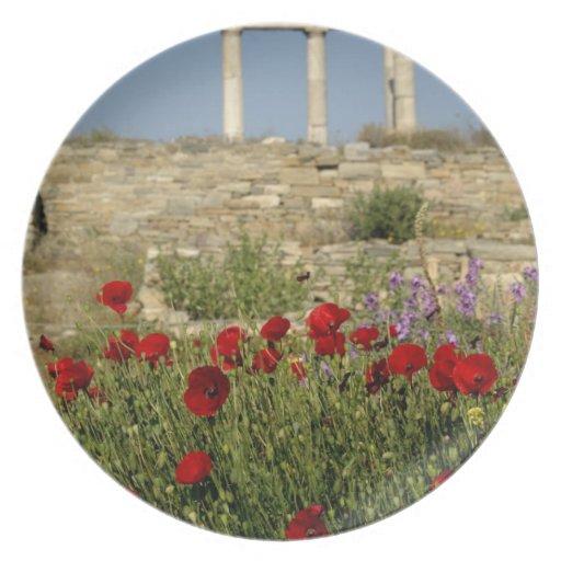 Europe, Greece, Cyclades, Delos. Column ruins. 2 Plate