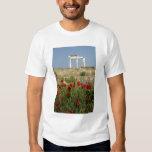 Europe, Greece, Cyclades, Delos. Column ruins. 2 Tee Shirt