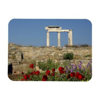 Europe, Greece, Cyclades, Delos. Column ruins. Magnet