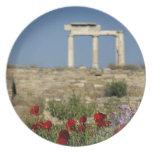 Europe, Greece, Cyclades, Delos. Column ruins. Plates