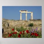 Europe, Greece, Cyclades, Delos. Column ruins. Poster