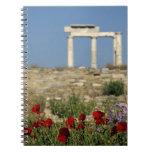 Europe, Greece, Cyclades, Delos. Column ruins. Spiral Notebook