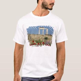 Europe, Greece, Cyclades, Delos. Column ruins. T-Shirt