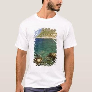 Europe, Greece, Peloponnese, Monemvasia. The T-Shirt