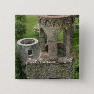 Europe, Ireland, Blarney Castle. THIS IMAGE Pinback Button