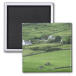 Europe, Ireland, Kerry County, Ring of Kerry. 2 Inch Square Magnet
