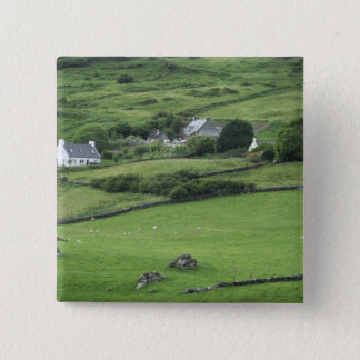 Europe, Ireland, Kerry County, Ring of Kerry. Button