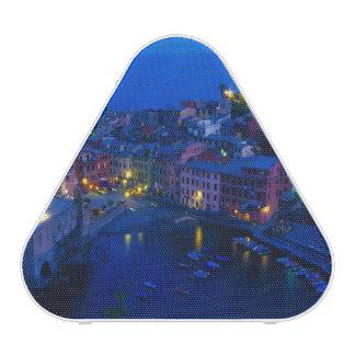 Europe, Italy, Cinque Terre, Vernazza. Hillside Speaker