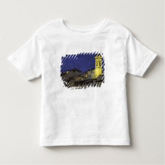 Europe, Italy, Florence, Architectural detail; Toddler T-shirt