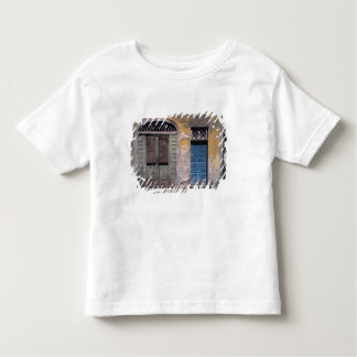 Europe, Italy, Lucca. These old doors add Toddler T-shirt