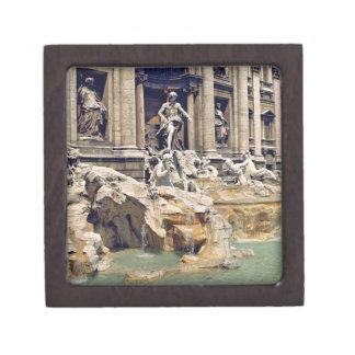 Europe, Italy, Rome. Coins litter the bottom of Keepsake Box