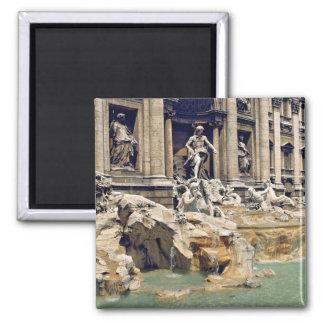 Europe, Italy, Rome. Coins litter the bottom of Fridge Magnets