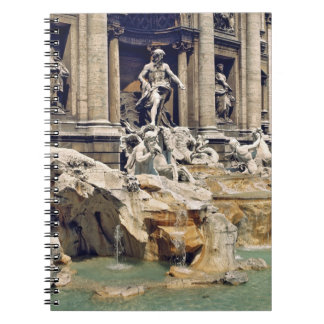 Europe, Italy, Rome. Coins litter the bottom of Spiral Note Book