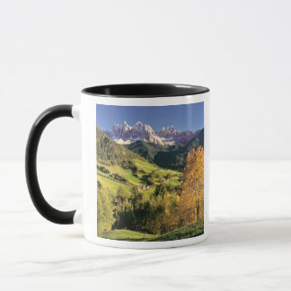 Europe, Italy, Santa Magdalena. The tiny Mug