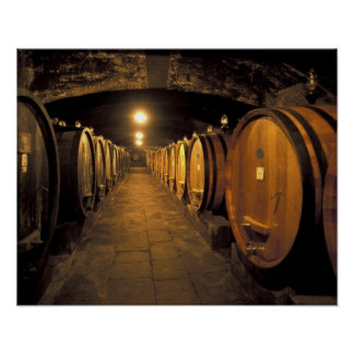 Europe, Italy, Toscana region. Chianti cellars Posters