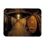Europe, Italy, Toscana region. Chianti cellars Rectangular Magnets