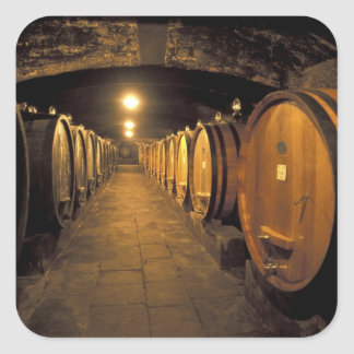 Europe, Italy, Toscana region. Chianti cellars Square Sticker