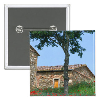 Europe, Italy, Tuscany, abandoned villa in 2 Inch Square Button