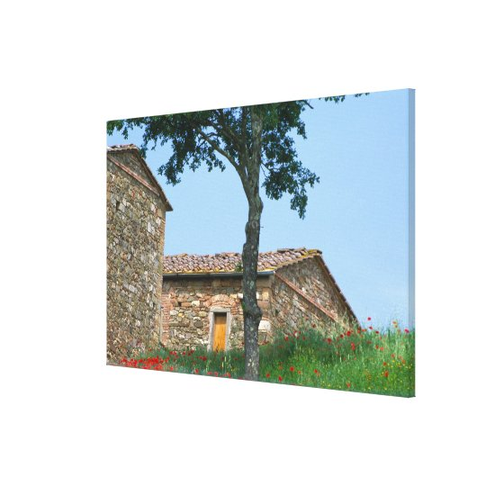 Europe, Italy, Tuscany, abandoned villa in Canvas Print