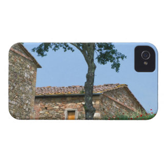 Europe, Italy, Tuscany, abandoned villa in iPhone 4 Case-Mate Cases