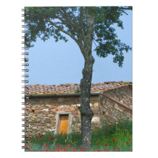 Europe, Italy, Tuscany, abandoned villa in Spiral Notebook