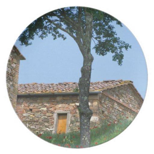 Europe, Italy, Tuscany, abandoned villa in Plate