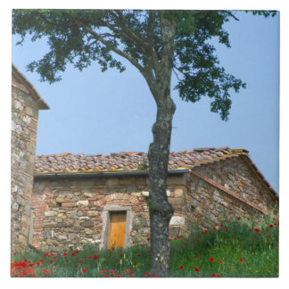 Europe, Italy, Tuscany, abandoned villa in Tile