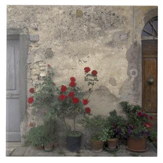 Europe, Italy, Tuscany, Chianti, Tuscan doorway; Ceramic Tile