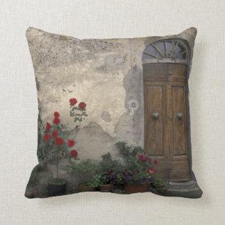 Europe, Italy, Tuscany, Chianti, Tuscan doorway Throw Pillow