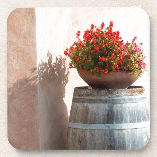 Europe, Italy, Tuscany. Flower pot Beverage Coasters